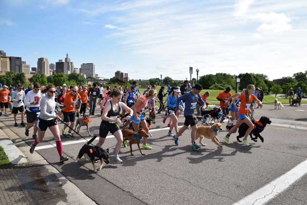 Pet owners and their pups get set to start the annual Fast and the Furry race at Harriet Island in St. Paul. The event raises money for the Minneapolis pet food shelf People & Pets Together.  Photo courtesy of People & Pets Together
