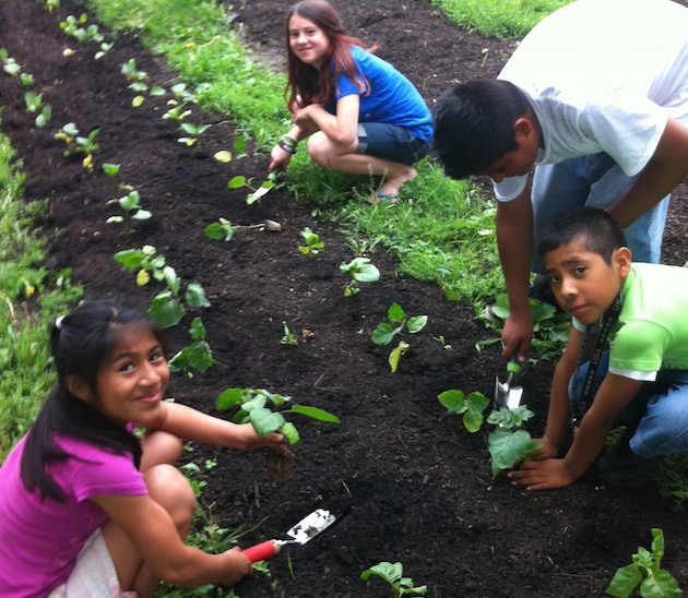 Photo courtesy of Youth Farm