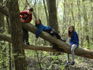 Current and former Kenwood students Eliah F, Ava W and Eleanor F (left to right), pictured last spring during the installation of oriole feeding stations at Cedar Lake Park. Submitted photo