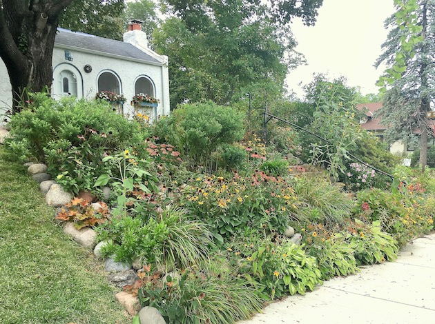 A view of Denise Stromberg's garden, which was honored by Metro Blooms as the best pollinator garden in Minneapolis. Photo courtesy Metro Blooms