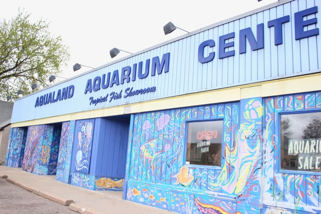 "Hale-Page-Diamond Lake neighbors and Mentoring Peace through Art partnered on a project to paint Aqualand's mural. Jon said the mural is a much-appreciated deterrent to graffiti. ""We haven't had one problem,"" he said."