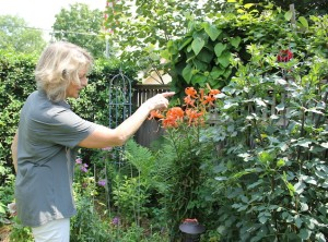 Susan Hopp, owner of A Pretty Posy, in her cutting garden.