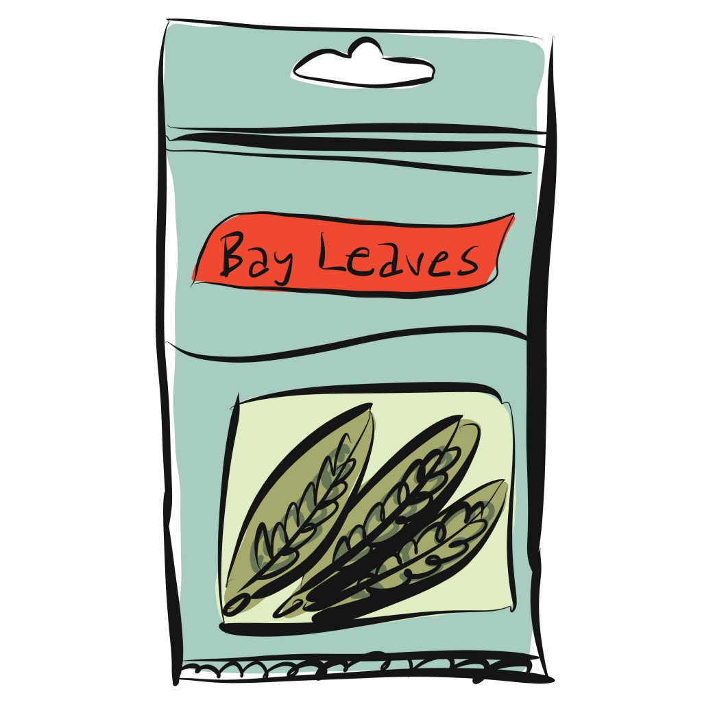 Bay leaves illustration