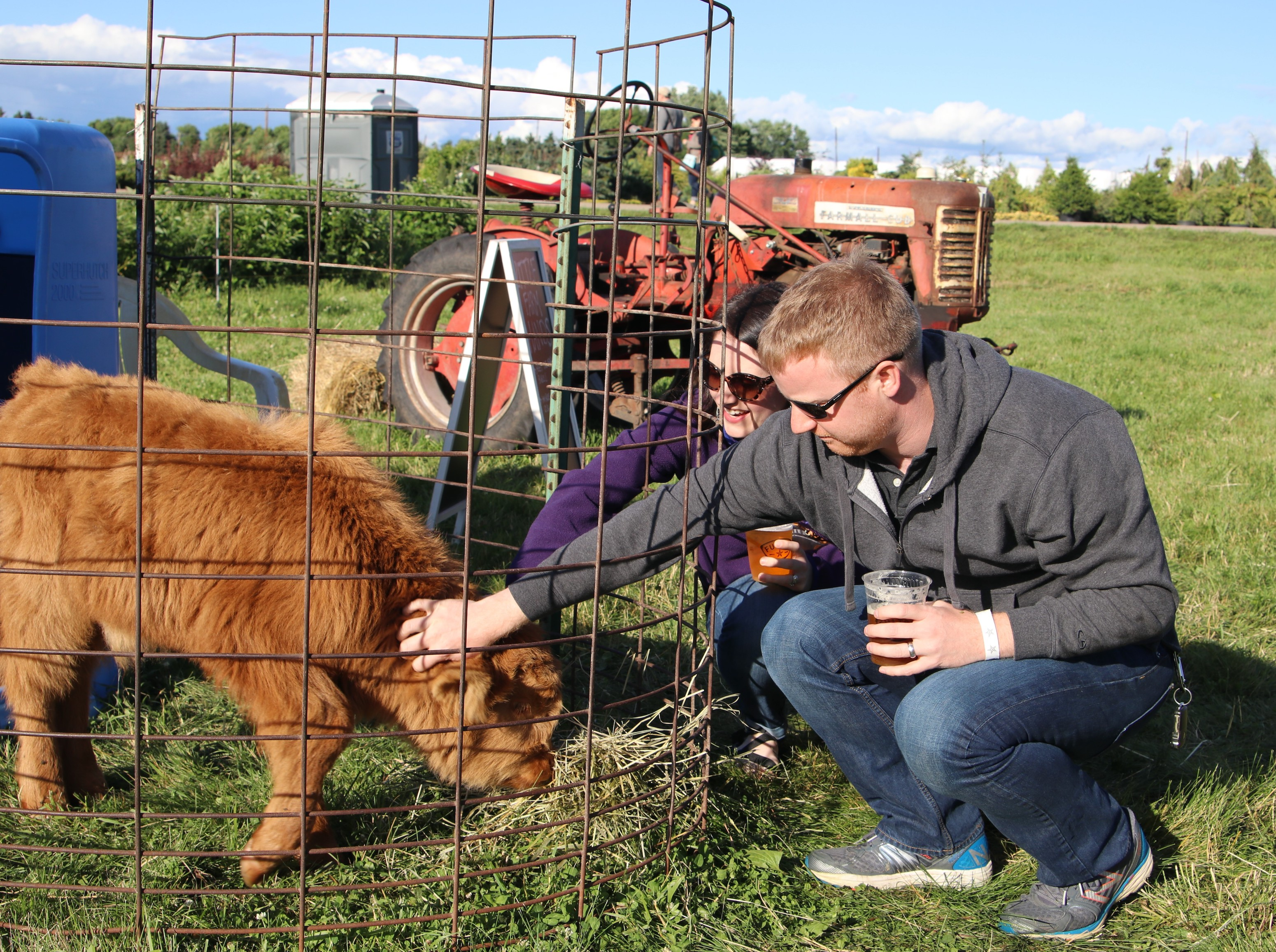 Patrons of Tangletown Gardens' annual farm day have the opportunity to meet the animals that live on the farm, which include Scottish highland cows, Heritage hogs, turkeys, ducks and chickens. Photo courtesy Tangletown Gardens