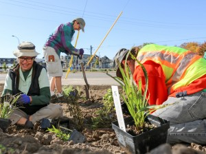 Master Water Stewards learn about ways to reduce stormwater runoff, such as by planting rain gardens. Photo courtesy Freshwater Society