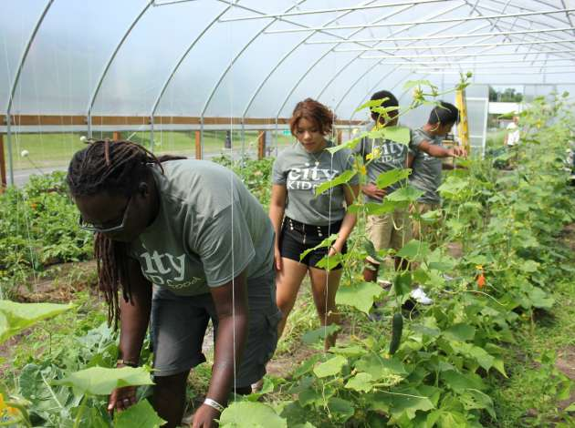 Credit: Gary Ross (l) oversees teens Leslie Nicolas, Deontre Wade and Mario Pascual working at CityKid Farm off the Midtown Greenway. Photo by Michelle Bruch