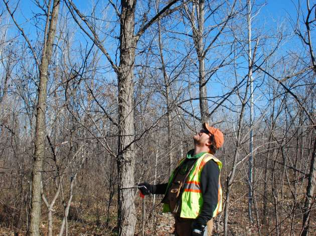 A Metropolitan Council crew conducted a Kenilworth Corridor tree survey during the winter of 2013–2014. Credit: File photo