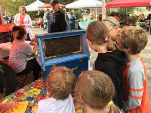 Kids explore an enclosed beehive from Pollinate Minnesota as part of the market's educational programming. Submitted photo