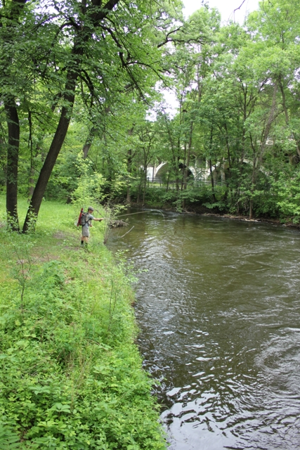 Mike McKinney fishes Minnehaha Creek in Tangletown.