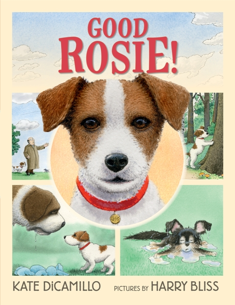 Book cover - Good Rosie