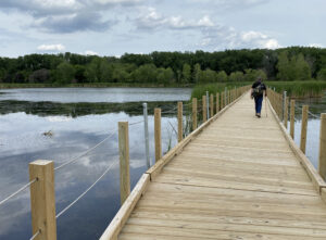 Wood Lake boardwalk